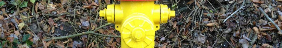 Hydrant Painting