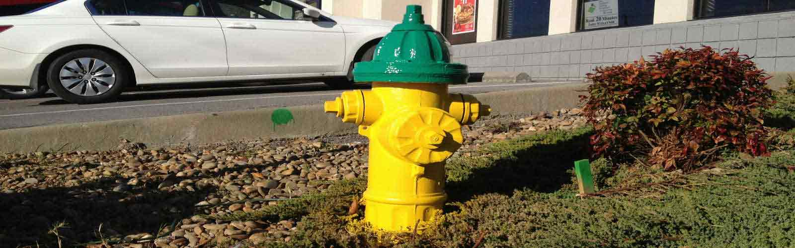 Hydrant-Restoration